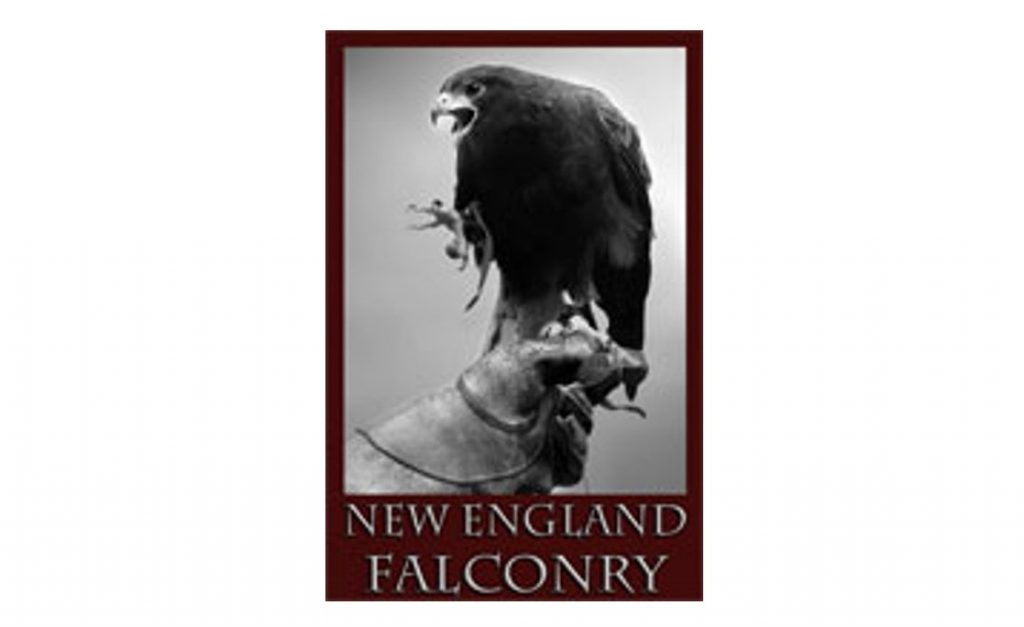 New England Falc
