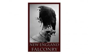 New England Falconry